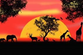векторная графика, животные , animals, сафари, картинка, животные