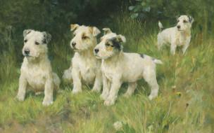 британский живописец, Подрастающее поколение, The rising generation, Артур Уордл, Arthur Wardle, English painter