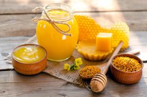 мед, воск, соты