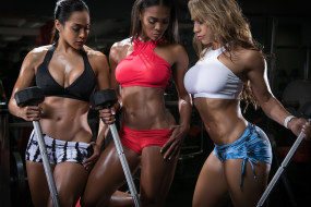Synthia, модель, bodybuilders, Девушка, Tae, Lizette