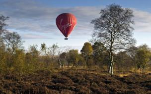 воздушный, деревья, шар