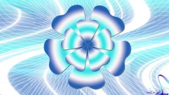 векторная графика, цветы , flowers, цвета, фон, узор