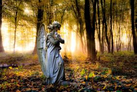 статуя, деревья, осень, листья, парк, ангел