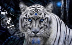 тигр, белый, мистика, камень