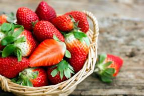 еда, клубника,  земляника, корзинка, ягоды