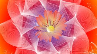 векторная графика, графика , graphics, цвет, фон, узоор