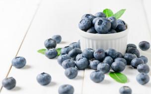 еда, голубика,  черника, черника, ягоды, wood, berries, fresh, blueberry