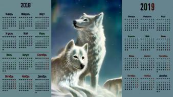 взгляд, волк