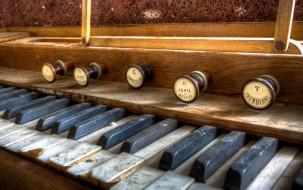 клавиши, орган