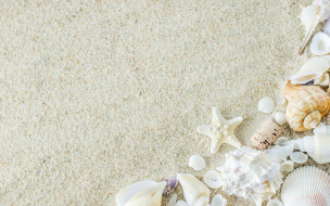 разное, ракушки,  кораллы,  декоративные и spa-камни, песок, sand, summer, звезда, starfish, marine, beach, seashells, пляж