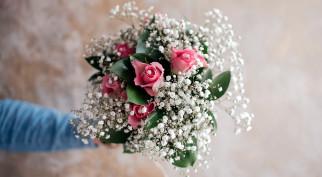 гипсофила, розы