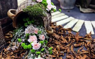 хризантемы, гвоздики