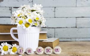 camomile, кружка, romantic, ромашки, цветы, flowers, mug