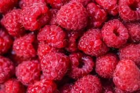 много, ягода, Малина