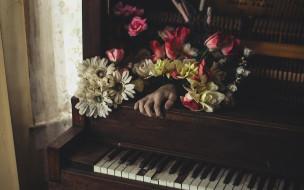 музыка, -музыкальные инструменты, цветы, клавиши, комната, рука