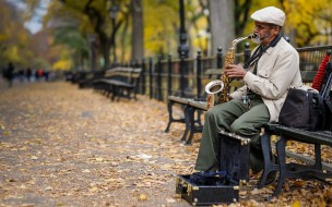 музыка, -другое, улица, парк, скамейка, саксофон, мужчина