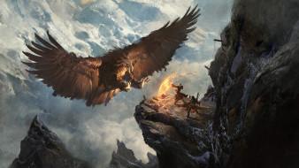 барьер, фон, мужчины, орел