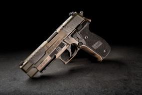 axelson p226, оружие, пистолеты, ствол
