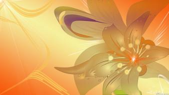 векторная графика, цветы , flowers, узор, фон, цвет
