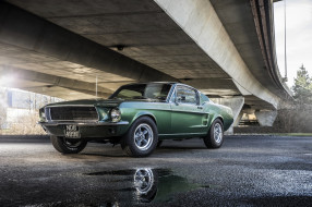 Форд, мост, Мустанг, лужа, зеленый