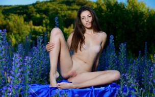 xxx, девушка, взгляд, фон, грудь, rosella, красотка, голая, поза, трава, природа