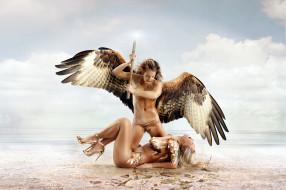 крылья, оружие, фон, девушки