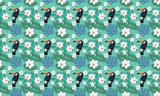 векторная графика, животные , animals, цветы, птицы, тропики, тукан