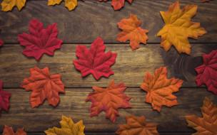 wood, background, осень, листья, дерево, фон, leaves, autumn, maple, осенние