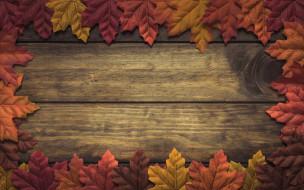 листья, осень, фон, дерево, wood, background, autumn, leaves, осенние, maple