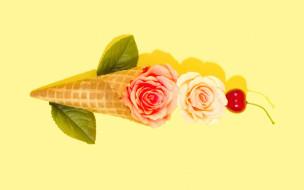 flower, розы, фон, цветы, черешня