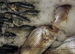 свежая, рыба