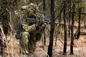 мужчины, - unsort, регулярная, армия, австралии, лес, камуфляж, солдат, оружие