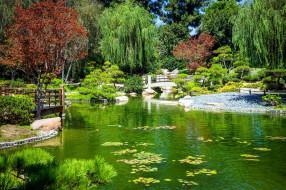сад, японский