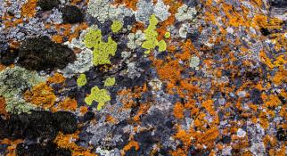 глыба, цвет, камень