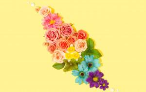flower, розы, фон, цветы