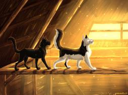 векторная графика, животные , animals, коты