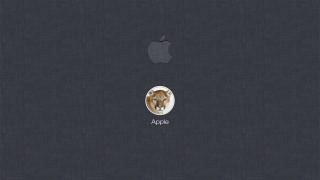 компьютеры, apple, фон, логотип