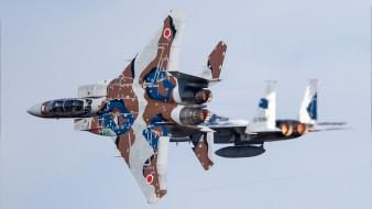 небо, военная авиация, McDonnell Douglas, ввс японии
