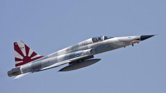 northrop f-5, многоцелевой истребитель, ввс сша