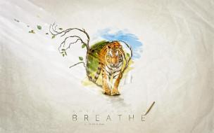тигр, надпись, дерево, листья