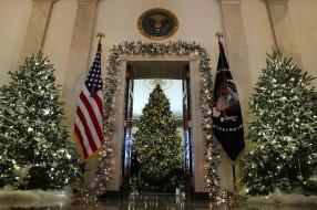 праздничные, Ёлки, елка