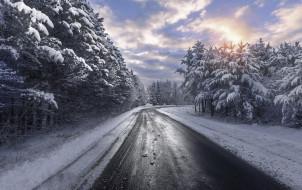 зима, лес, дорога