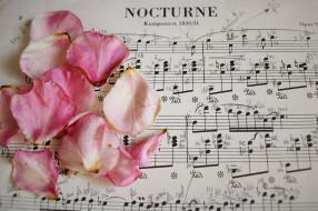 ноты, музыка, розы, лепестки