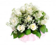 розы, гипсофила