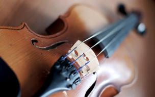 музыка, -музыкальные инструменты, скрипка