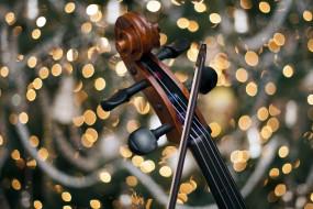 музыка, -музыкальные инструменты, скрипка, боке, гриф, виолончель