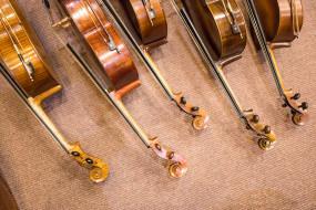 музыка, -музыкальные инструменты, скрипка, виолончель