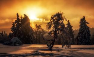 зима, закат, природа