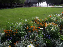 лужайка, клумба, фонтан