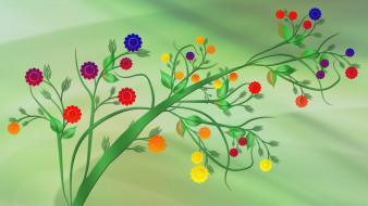 фон, цветы, стебель